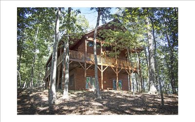 Cherokee County Single Family Home For Sale: 310 Treehouse Trail