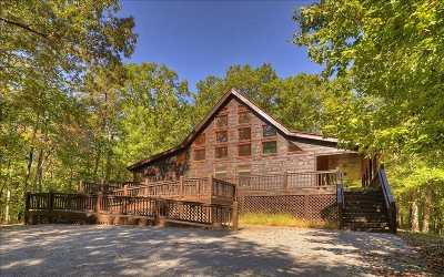 Blue Ridge Single Family Home For Sale: 163 Brown Bear Path