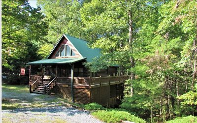 Blue Ridge Single Family Home For Sale: 1214 Bear Paw Trail