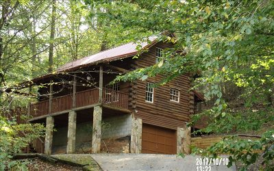 Ellijay Single Family Home For Sale: 334 Cherokee Trail