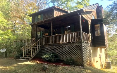 Blairsville Single Family Home For Sale: 162 Virginia Lane