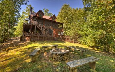 Blue Ridge Single Family Home For Sale: 420 Bobcat Road