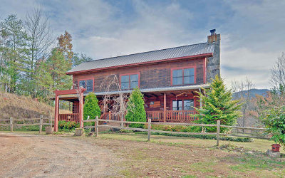 Andrews Single Family Home For Sale: 1302 Pisgah Road