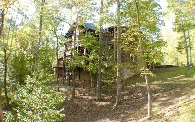 Gilmer County Single Family Home For Sale: 168 Oleta Court
