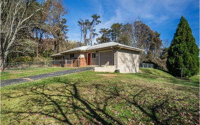 McCaysville Single Family Home For Sale: 535 Colton Rd