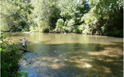 Ellijay Residential Lots & Land For Sale: Lt 24 Cartecay River Run