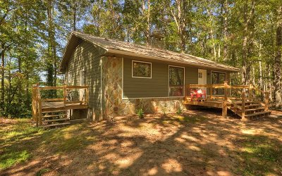 Blue Ridge Single Family Home For Sale: 35 Lake Trace Drive