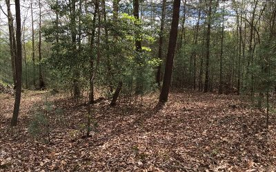 Ellijay Residential Lots & Land For Sale: Lot1a Orchard Circle