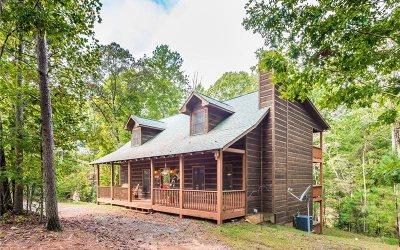 Ellijay Single Family Home For Sale: 875 Acadia Drive