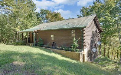 Hayesville Single Family Home For Sale: 231 River Run Way