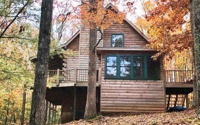 Ellijay Single Family Home For Sale: 886 Valley Drive