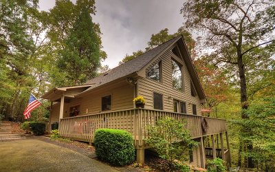 Ellijay Single Family Home For Sale: 74 W Goldmine Road