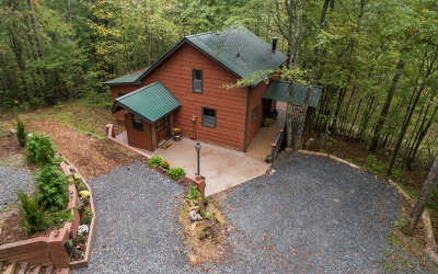 Blue Ridge Single Family Home For Sale: 40 Nickawasi Way