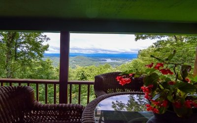 Hiawassee Single Family Home For Sale: 1798 Ivy Mountain Rd