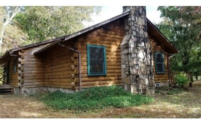 Blairsville Single Family Home For Sale: 164 Log Cabin Rd