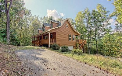 Blairsville Single Family Home For Sale: 260 Josie Lane