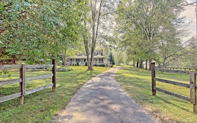 Blairsville Single Family Home For Sale: 643 Ray Lewis Road