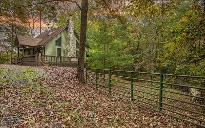 Mineral Bluff Single Family Home For Sale: 144 Deer Trail