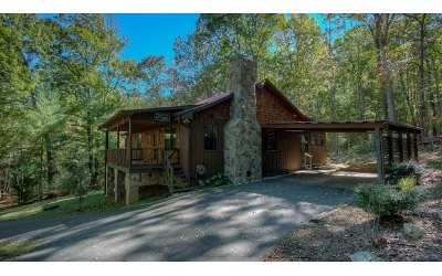 Blairsville Single Family Home For Sale: 81 Oakwood Road