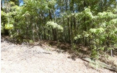Ellijay Residential Lots & Land For Sale: 39-40 Crabapple Ct