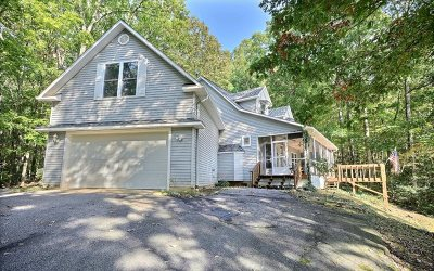 Blairsville Single Family Home For Sale: 149 Hunt Hollow Lane