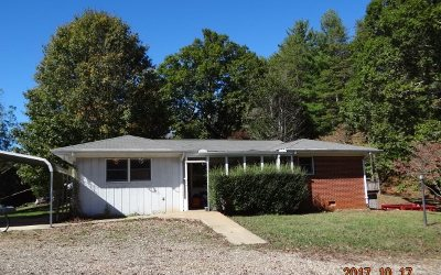 Blairsville Single Family Home For Sale: 920 Big Sky Road