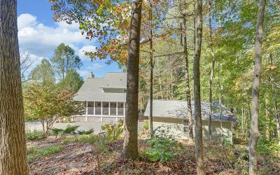 Blairsville Single Family Home For Sale: 92 Bulldog Lane