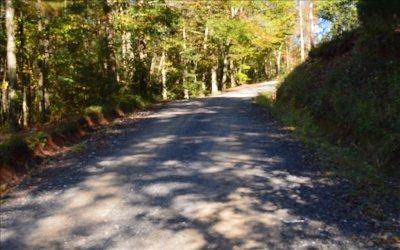 Ellijay Residential Lots & Land For Sale: Tr 12 Gunstock Creek Rd.