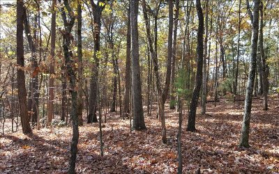 Ellijay Residential Lots & Land For Sale: Lt204 Mountiantown Heights