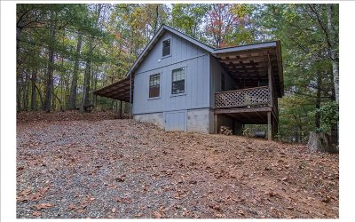 Fannin County Single Family Home For Sale: 221 High Country Lane