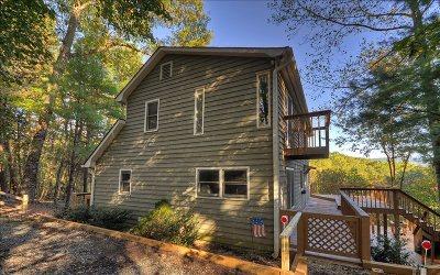 Ellijay Single Family Home For Sale: 204 Hunter Hill Way