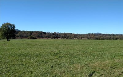 Warne Residential Lots & Land For Sale: 4771 Old Hwy 64 W