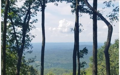 Ellijay Residential Lots & Land For Sale: Lt250 Andes Ridge