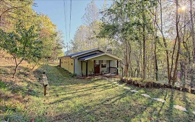 Hiawassee Single Family Home For Sale: 701 Mountain View Dr