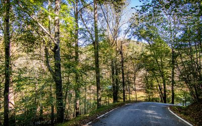 Ellijay Residential Lots & Land For Sale: Spindrift Court