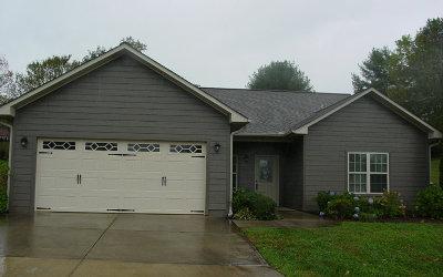 Hayesville Single Family Home For Sale: 31 Riverwalk Circle