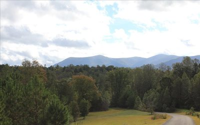 Ellijay Residential Lots & Land For Sale: 9+ Ac Bryant Creek
