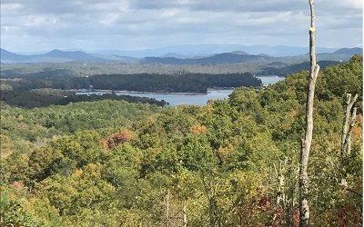 Blue Ridge Single Family Home For Sale: #23a Greenridge Trail