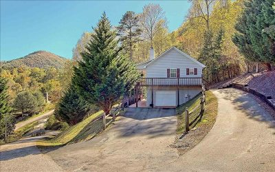 Hiawassee Single Family Home For Sale: 1201 Bear Paw Ln