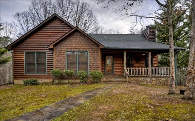 McCaysville Single Family Home For Sale: 901 W Hidden Vally Lakes
