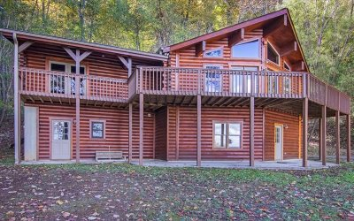 Blue Ridge Single Family Home For Sale: 667 Chestnut Ridge