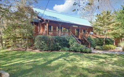 Mineral Bluff Single Family Home For Sale: 946 Fish Trap Trail