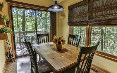 Ellijay Single Family Home For Sale: 354 Blackberry Mtn Drive