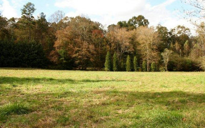 Ellijay Residential Lots & Land For Sale: Bible Baptist Rd
