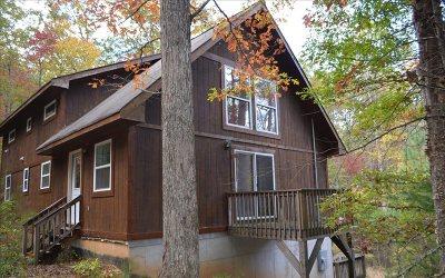 Ellijay Single Family Home For Sale: 64 Mountain Laurel Ln