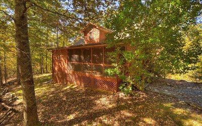 Blue Ridge Single Family Home For Sale: 390 Moss Lane