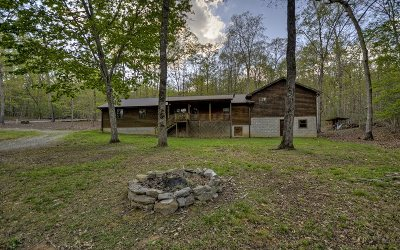 Blairsville Single Family Home For Sale: 72 Darlene Drive