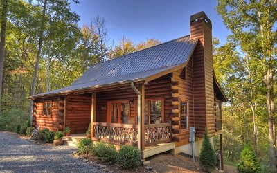 Blue Ridge Single Family Home For Sale: 294 Icy Lane
