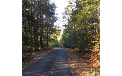 Ellijay Residential Lots & Land For Sale: Lot 3 Upper Pond Rd.