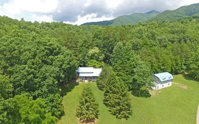 Hayesville Single Family Home For Sale: 436 Compass Meadows Dr